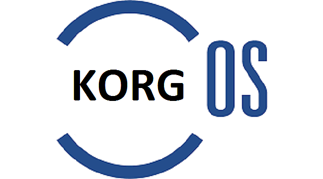 KORG PA800 256mb RAM O.S 2.02 (seri numara gerekmez / NO SERIAL NEEDS)