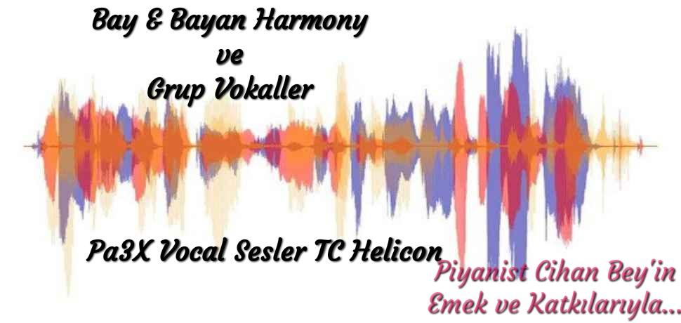 PA3X ÖZEL VOKALLER / Special Vocals (piyanistset.com)