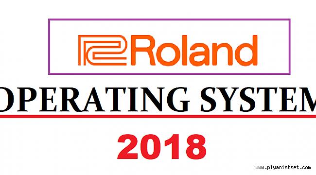 ROLAND GW-8 O.S. (2018)