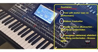 Korg Pa1000 MG Edition - Double Engine in One