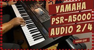 Yamaha Psr-A5000 Audio Style 2/4